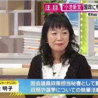 """日本ファーストの会""""に小池都知事はどう関与?"""